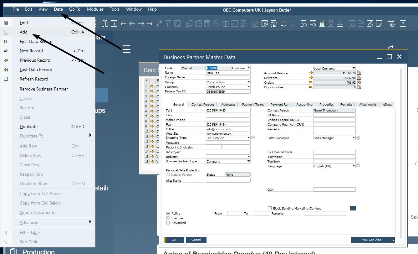 sap business one interface, navigation, customization